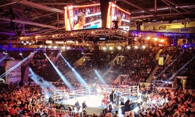 Live Professional Boxing at Danforth Music Hall